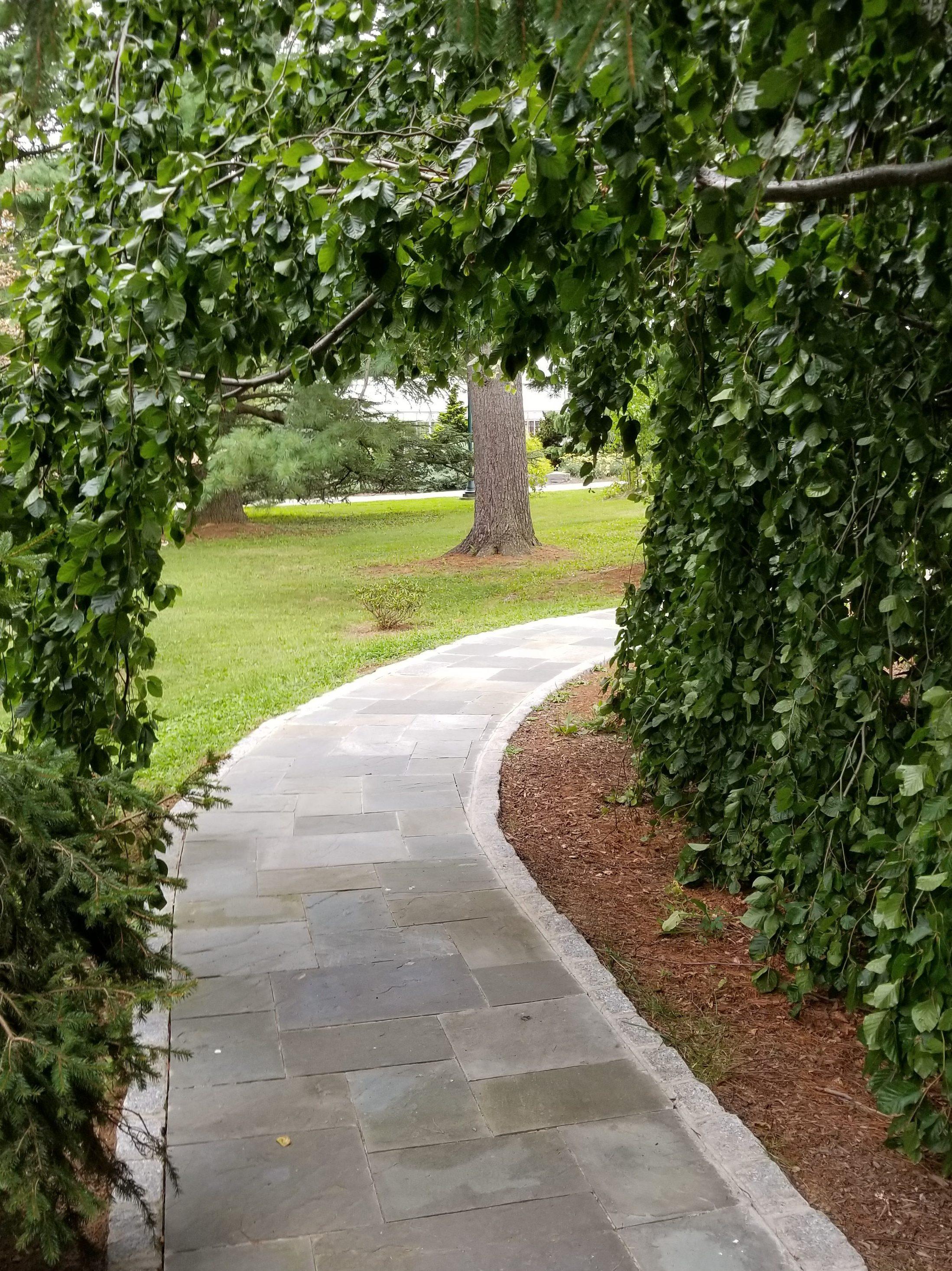 Ambler Arboretum                       of Temple University