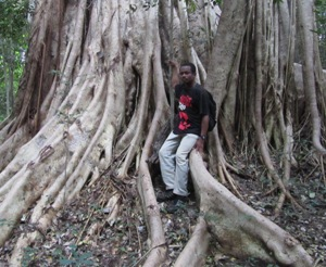 Marcellin Secondary Forest Ficus_post