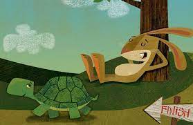 """The Investment Lessons from the Tale of """"The Tortoise and the Hare"""" -  CheckBook IRA LLC ™"""