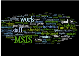 Word Map of One MSIS Vision Statment