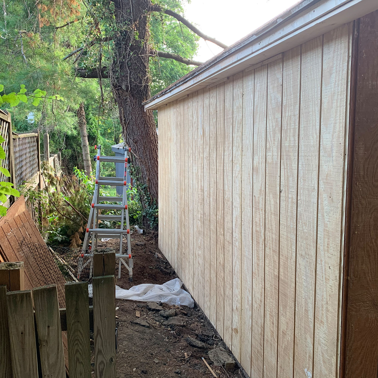 replaced t1-11 shed wall finished outside
