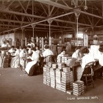 T&O Cigar Banding Department, 1900