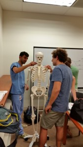 Students learn the bones