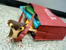 The Library Owl (stuffed animal) with a Library Book Bag full of books.