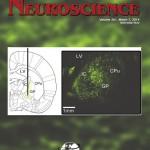 Parikh-Cover-Neuroscience