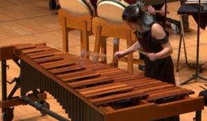 photo of xylophone