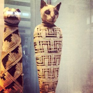 British Museum Cat mummy