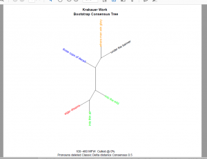 Consensus Tree Plot