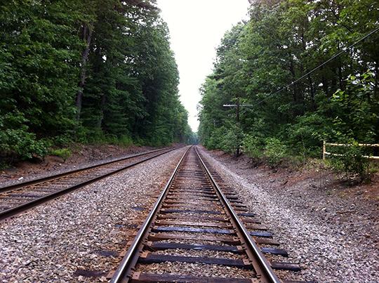 walden tracks540
