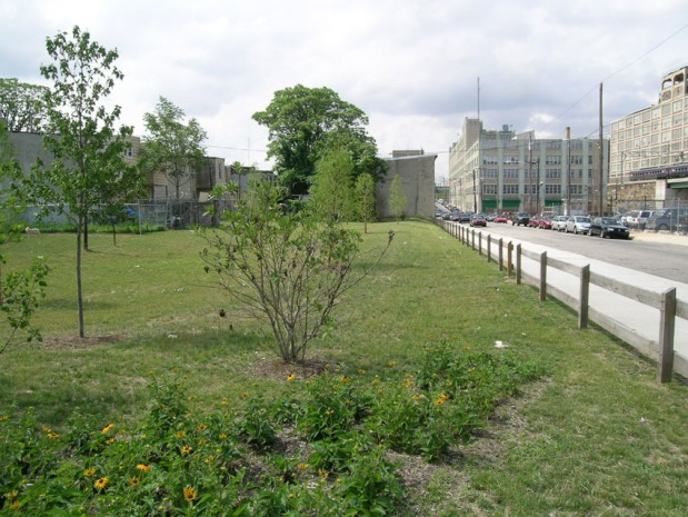 Models for Stormwater Management on Reclaiming Vacant Land