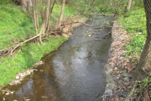 Paper Mill Run Streambank Restoration