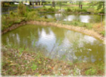 Pennypack Ecological Restoration Trust Stormwater Wet Ponds