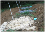 Pennypack Ecological Trust Infiltration Trenches