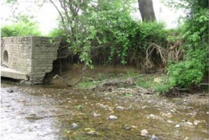 Sandy Run Stream Restoration