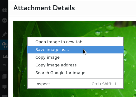 wp-site-export-attachment