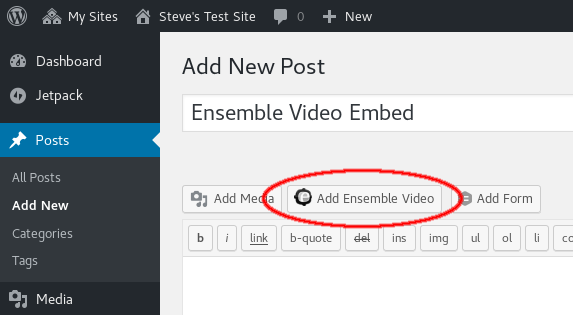 Add Ensemble Video Button