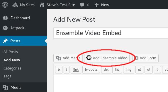 Add Ensemble Video Button